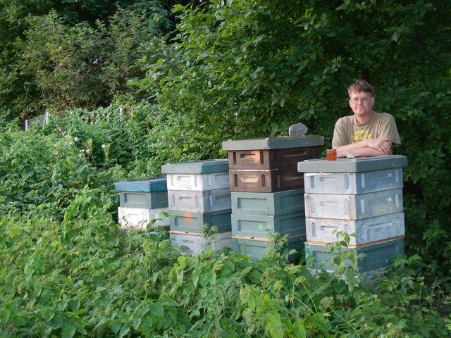 Mehiläispesät
