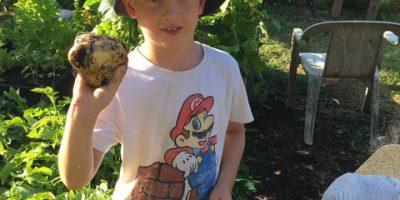 Lasten puutarhakerho